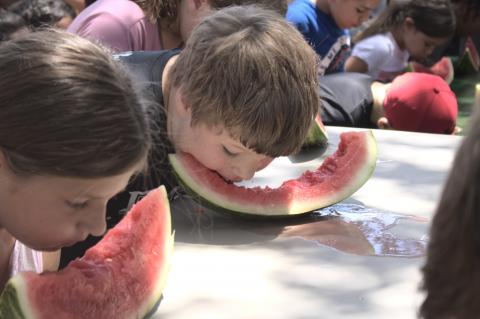 Watermelon-eating contests, ages seven through 12